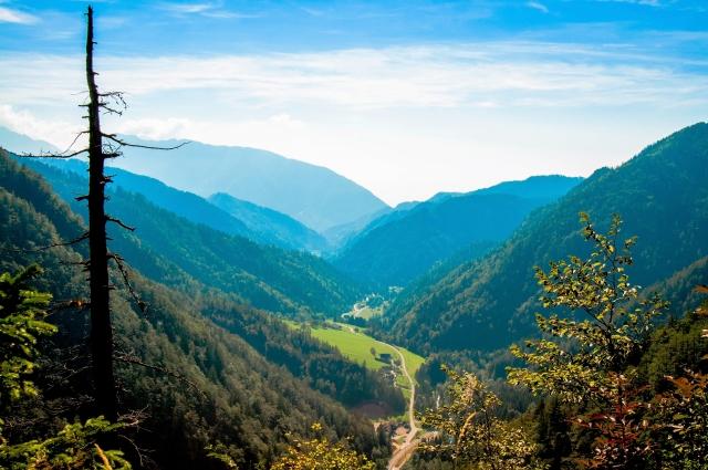 山林を売却する方法と4つの注意点!相場と税金も要チェック !